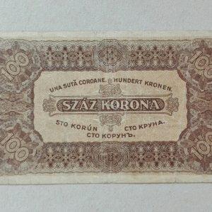 100 korona 2